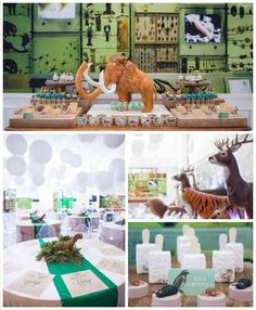Museum of Natural History Themed Party via Kara's Party Ideas | KarasPartyIdeas.com | The Place for All Things Party! (2)