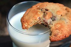 Peanut Butter S'Mores Cookies  www.bluebonnetsandbrownies.com