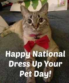 January 14 is National Dress Up Your Pet Day! Post a picture of your pet in their cutest or silliest outfit on our Facebook page for the chance to win $25!