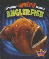 Describes the anglerfish that has a long thin fin ray called the illicium that dangles in front of the fish's face and attracts prey.