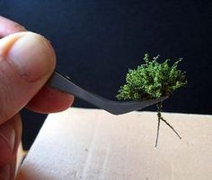 TUTORIAL - creating miniature bushes/shrubbery from frayed twine wrapped with wire, coated with powdered green texture product - in Spanish, but step-by-step photos illustrate the process well. Train Miniature, Miniature Plants, Miniature Dolls, Dollhouse Tutorials, Green Texture, Mini Plants, Mini Things, Miniture Things, Fairy Houses