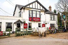 Red Shoot Inn BrassMonkeys