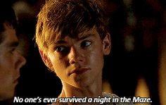 Maze Runner Series, Survival