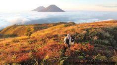 Gunung Prau (Mt. Prau) 2.565 Mdpl