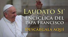 TEXTO COMPLETO: La encíclica Laudato Si' del Papa Francisco en PDF y versión web