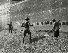 Men dry betel nuts in George Town, Malaysia, 1938.Photograph by Maynard Owen Williams, National Geographic