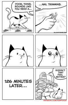 How to Cat by Lucas Turnbloom for July 2019 - GoComics Cute Cats, Funny Cats, Funny Animals, Cute Animals, Crazy Cat Lady, Crazy Cats, Comic Cat, Catsu The Cat, How To Cat