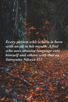 Samyutta Nikaya 657, Theravada Buddhism