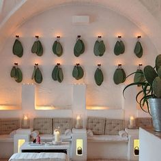 🌵Cactus paddles and luscious lighting, this may be the prettiest waiting area we ever did see🌵 Location unknown. . . #ruedeseine…