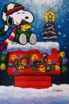 Merry Christmas with Snoopy and Woodstock Snoopy Love, Snoopy Feliz, Snoopy E Woodstock, Charlie Brown Und Snoopy, Peanuts Christmas, Charlie Brown Christmas, Noel Christmas, Winter Christmas, Vintage Christmas
