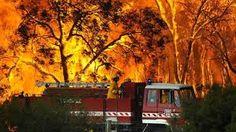 Australian bushfires. Firefighters tackle a blaze in western Sydney. Photo by Nick Moir.