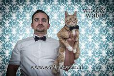 Happy World Animal Day!  Photographer: Duncan Gidney #petbowtie