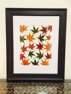 Lou B's Autumn Japanese Maple Leaves on paper
