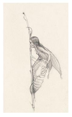 ArtStation - A la recherche de Feerie Jean-Baptiste Monge Fairy Drawings, Fantasy Drawings, Cool Art Drawings, Art Sketches, Fantasy Art, Aesthetic Drawing, Aesthetic Art, Natur Tattoo Arm, Sibylla Merian