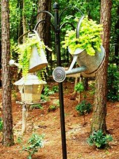 Watering cans used as hanging planters