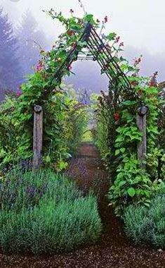 For hanging flowers, placed in back of yard along privacy fence.