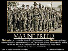The Marine Breed. Marine+Motivational+Quotes   Marine Corps Moto,Marine Corps Motivational Posters,Marine Corps ...