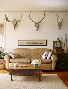The moose, caribou and deer skulls line the living room wall, giving the space a gentleman's club feel. Small Living Rooms, Living Room Decor, Living Spaces, Deer Skull Decor, Deer Skulls, Animal Skulls, Masculine Room, Cabinet Of Curiosities, Kitchens And Bedrooms