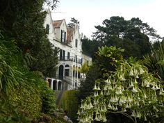 The Palace of Monte Palace Tropical Garden - Madeira, Portugal. #travel…