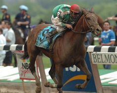 Afleet Alex(2002)Northern Afleet -Maggy Hawk By Hawkster. 12 Starts 8 Wins 2 Seconds 1 Thirds. $2,765,800. Won 2005 Preakness(G1) And Belmont(G1) After Running Close Third In Kentucky Derby(G1).