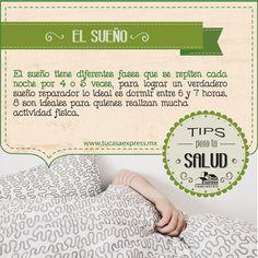 El sueño tiene diferentes fases que se repiten cada noche por 4 o 5 veces.
