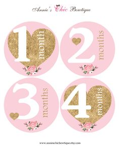 Gold Glitter baby sticker, Pink Month Sticker, Milestone stickers, Baby girl monthly stickers, Baby Shower Gift, Heart Monthly Stickers A140 by AnniesChicBowtique on Etsy