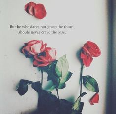 """""""But he who dares not grasp the thorn, should never crave the rose.""""   #INTJ"""