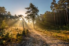 Path of Light by William Mevissen on 500px