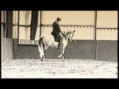 Nuno Oliveira- Leçon Passage - - YouTube