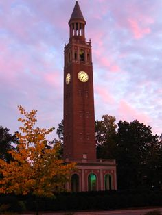 Chapel Hill- beautiful pic of Bell Tower!