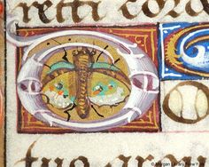 Book of Hours, MS H.5 fol. 90r - Images from Medieval and Renaissance Manuscripts - The Morgan Library & Museum