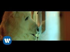 """Vance Joy - """"Mess is Mine"""" [Official Video]"""