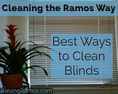 how to clean window blinds with vinegar