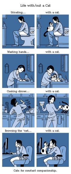 They like being close to you. | 36 Illustrated Truths About Cats    So true. They act like they don't care but they still want to be all up in your business!