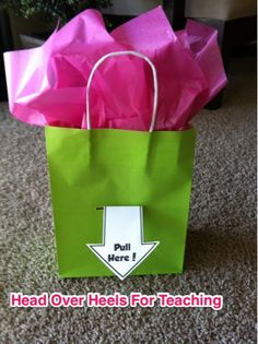 Money gift bag, Reading Counts chart, and a few other random ideas for school and home.