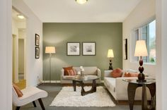 30 Great Design Ideas of Living Rooms With Accented Walls - Guest Bath Color