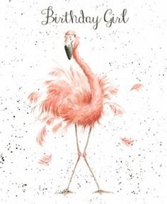 Wrendale Designs Happy Birthday Greeting Card NEW Flamingo Birthday girl Happy Birthday Wishes Cards, Happy Birthday Girls, Girl Birthday Cards, Birthday Blessings, Happy Birthday Pictures, Birthday Messages, Birthday Quotes, My Birthday, Happy Birthday Lovely Lady