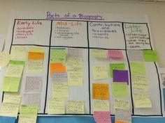 Responsibility essay titles