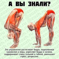 Fájdalom a húgyhólyagban prosztatitis Prostatitis fürdő után
