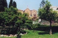 Real Santuario San Jose De La Montana en Barcelona, Cataluña