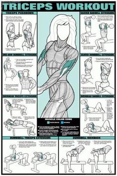 triceps exercises by blanca