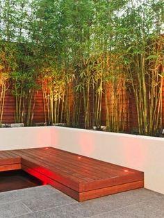 Des bambous pour aménager un jardin déco sans vis à vis