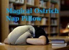 Feel sleepy anywhere...