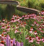 """""""Art in Bloom"""" Fine Art Festival - June 14 & 15, 2014 - Cantigny Park, Wheaton, IL ..."""