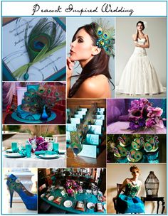 Carousel Weddings and Events: Peacock Wedding