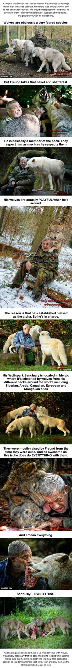 I Thought This Guy Living With Wolves Was Super Cool. Then I Saw The Last Photo…WHAT.
