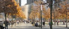 NATIONAL SEPTEMBER 11 MEMORIAL/ PWP Landscape Architecture