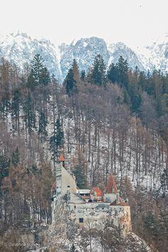 castelul bran, brasov, romania, februarie 2020 Dracula Castle, Snow, Outdoor, Outdoors, Outdoor Games, Outdoor Living, Bud, Let It Snow