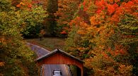 While leaf peeping is best done on foot - the better to engage all of your senses - you have to get there somehow, so here are some suggestions for fabulous fall foliage road trips throughout the US.