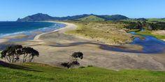 Kauri Mt Beach, Pacific Ocean side of Whangarei Heads, The North Island, New Zealand